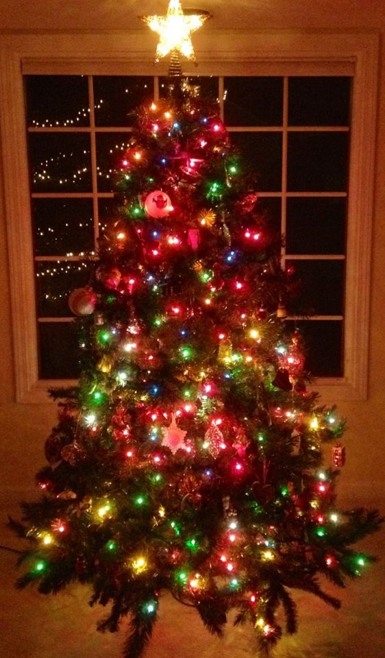 "Student Spotlight: ""O Christmas Tree"""