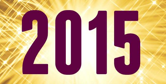 2015 Goals & Plans