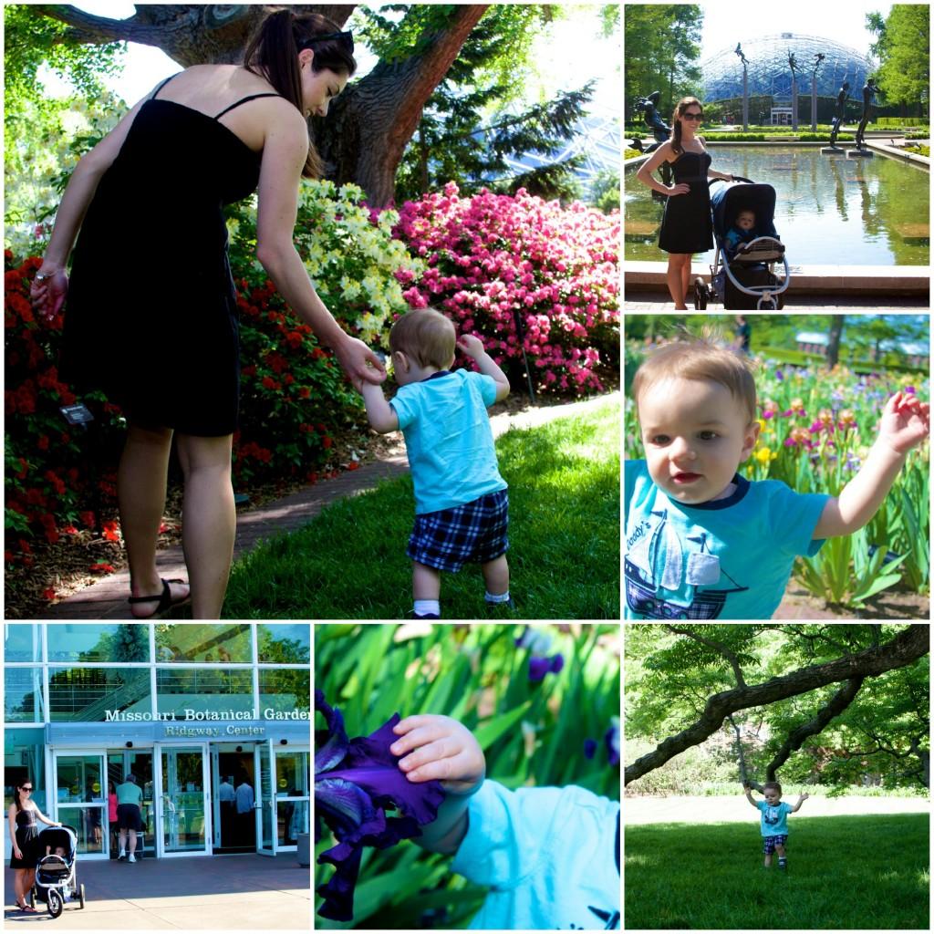 First Trip to Botanical Gardens