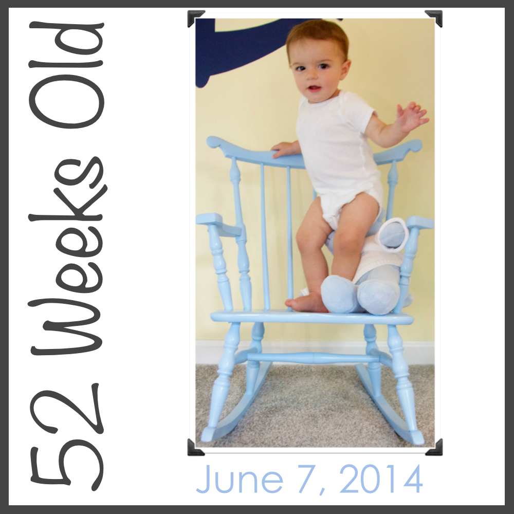 52 Weeks of Parker