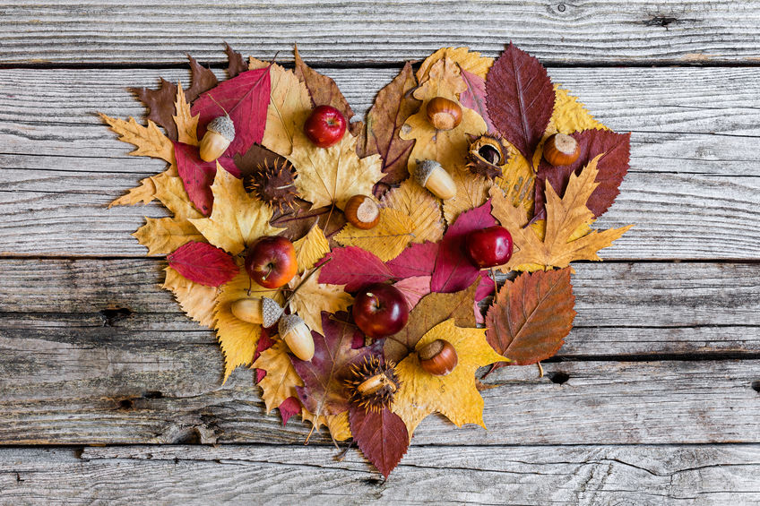 23 Days of Gratitude