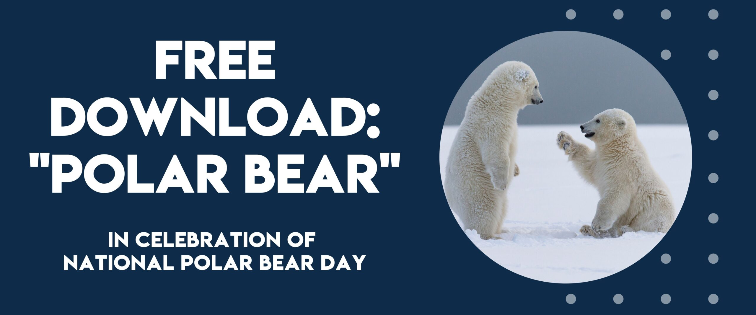 National Polar Bear Day - Free Song Download | Listen & Learn Music
