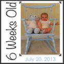 {Parker Weekly} Six Weeks Old